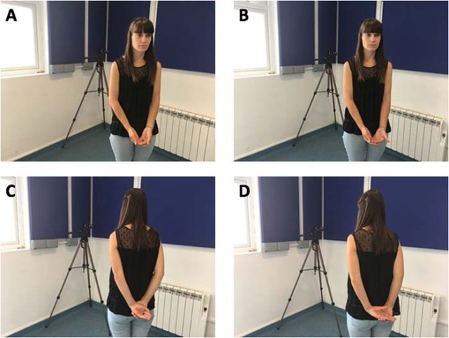 Testing how human attention affects facial expressions in domestic dogs