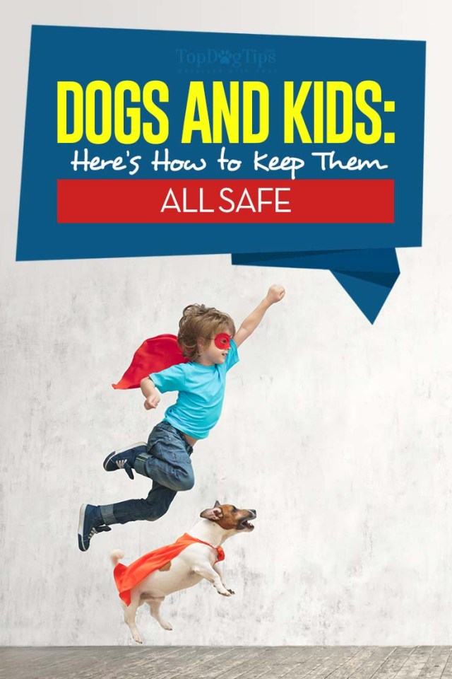 safety rules for kids and dogs