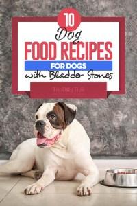 10 Homemade Dog Food Recipes for Bladder Stones