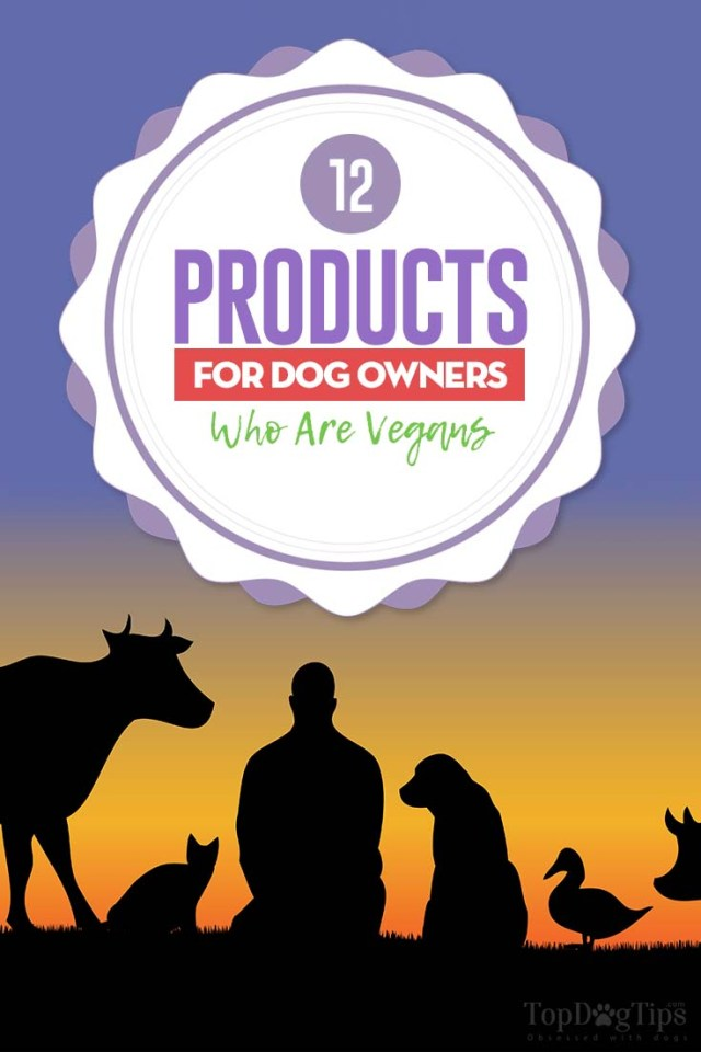 12 Products for Dog Owners Who Are Vegans