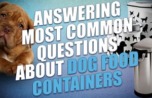 FAQ: 23 Questions to Ask Before Buying a Dog Food Container