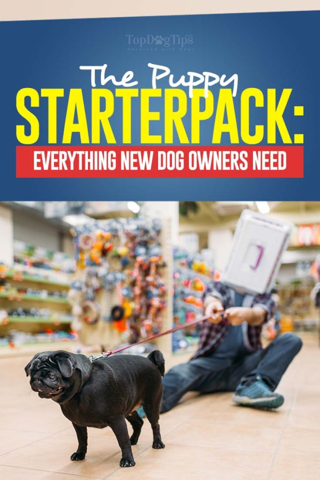 The New Puppy Shopping Checklist