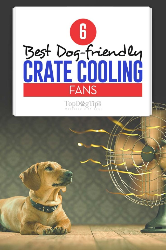 Top Rated Best Dog Crate Cooling Fans