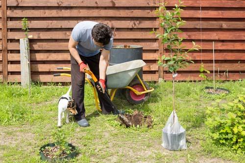 Avoid Toxic Plants