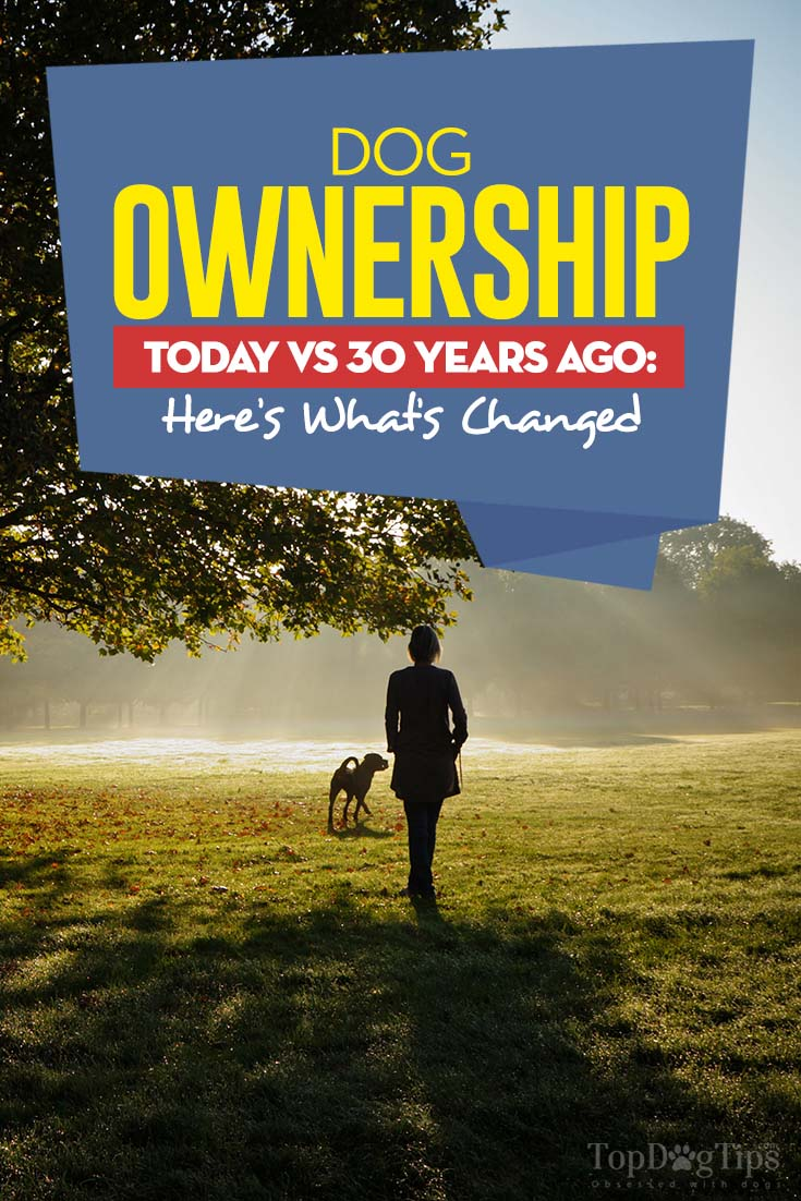 Dog Ownership Today vs 30 Years Ago
