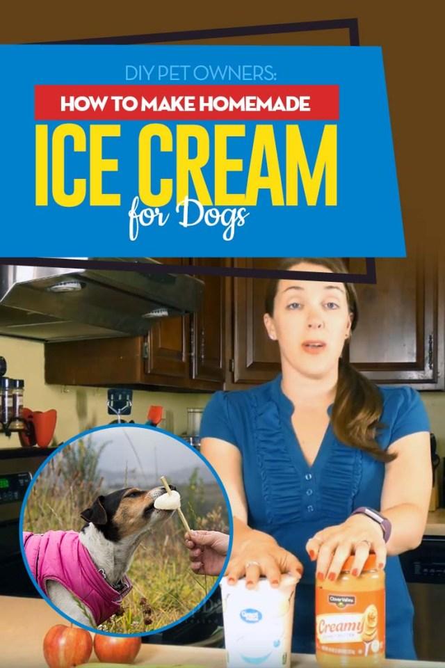 Guide on How to Make Dog Ice Cream (Homemade Dog Ice Cream)