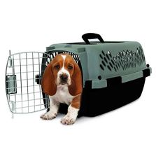 Aspen Pet Porter Kennel