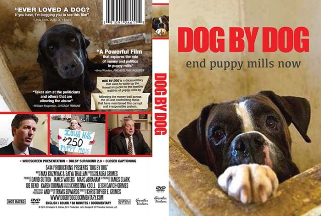 Dog By Dog dog documentary