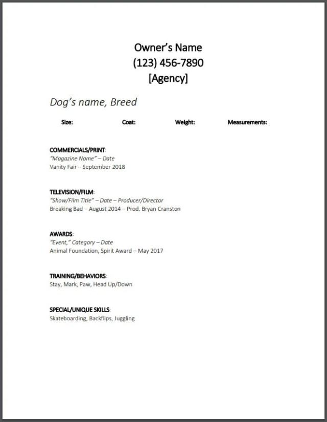 Dog Modeling Resume