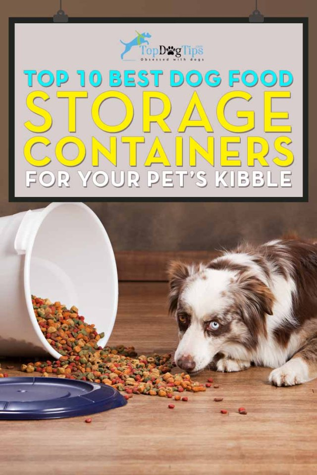 Top Rated Best Dog Food Storage Container