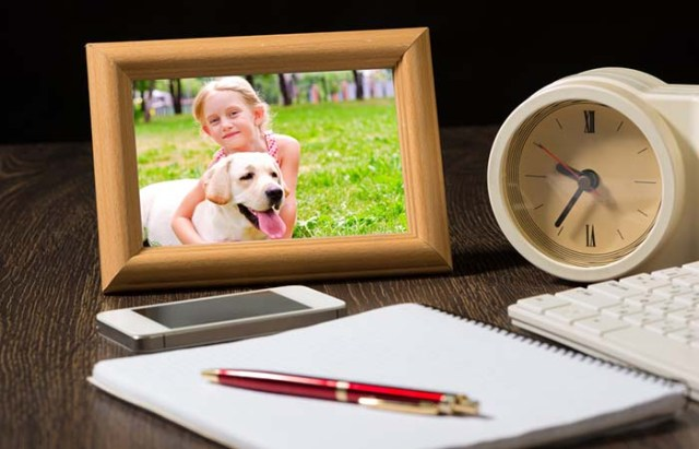 Your dog's photo is on your work desk