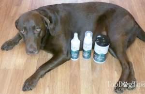 Zogics Dog Grooming Supplies