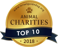 Top 10 Animal Charities - Israel Guide Dog Center for the Blind