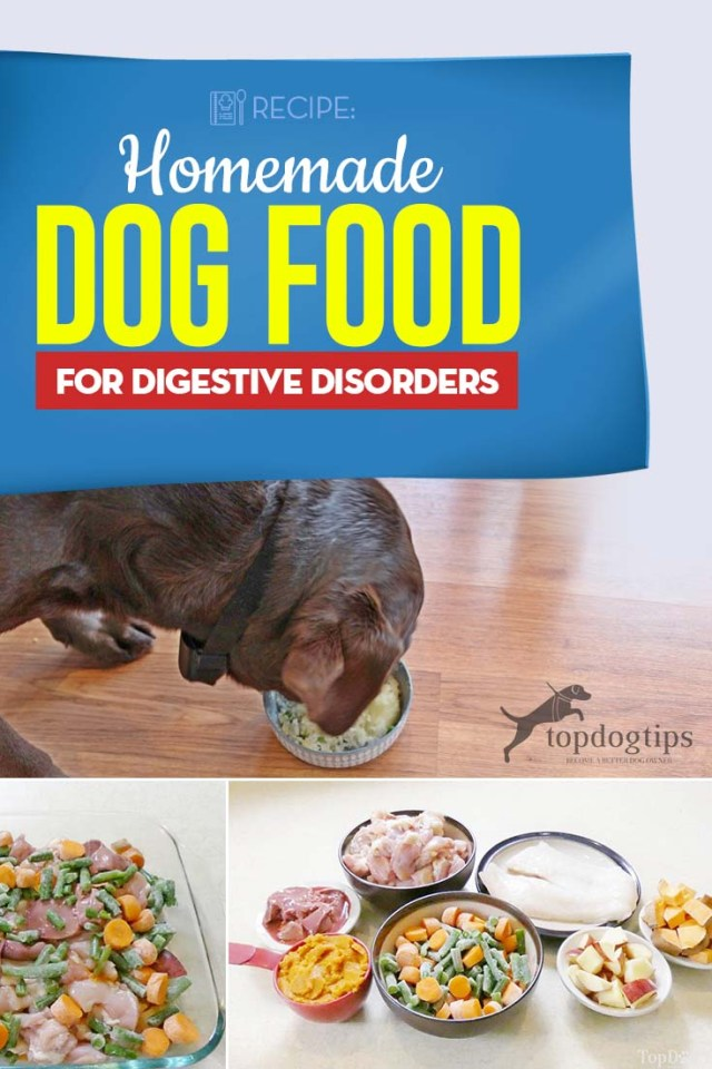 Best Homemade Dog Food for Digestive Disorders Recipe