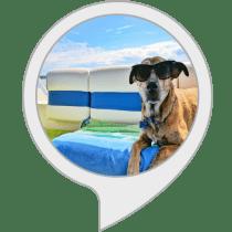 Dog Summer Safety Tips Alexa Skill