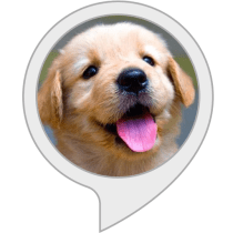 Relax My Dog Alexa Skills
