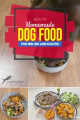 The Best Homemade Dog Food for IBD, IBS and Colitis Recipe