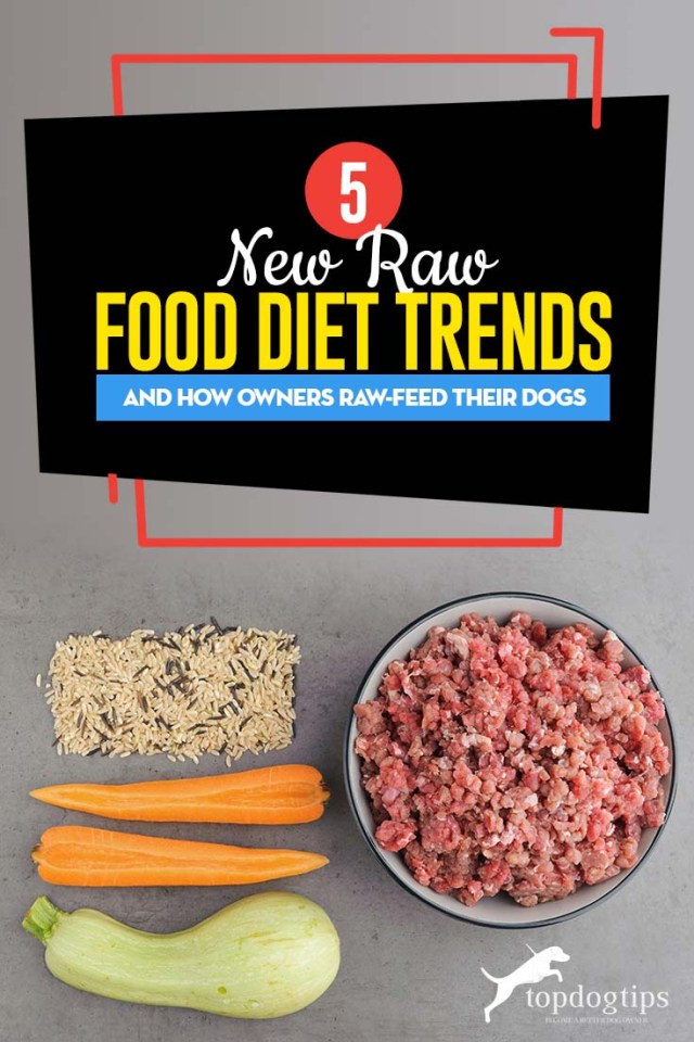 Top 5 Raw Food Diet Trends and How Pet Owners Raw-Feed Their Dogs