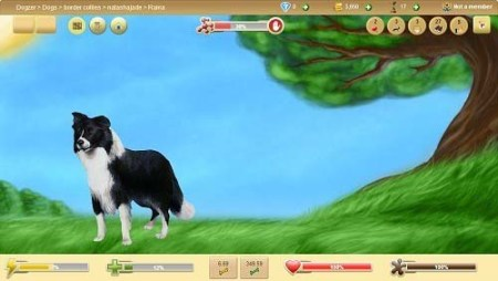 Virtual Dog on Dogzer Free Dog Game Online