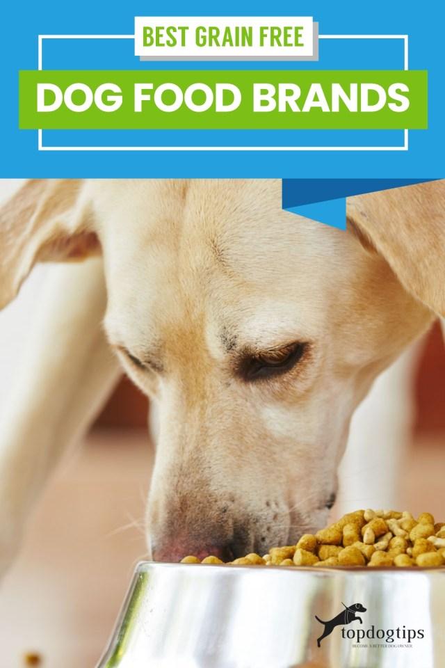 best grain free dog food brands