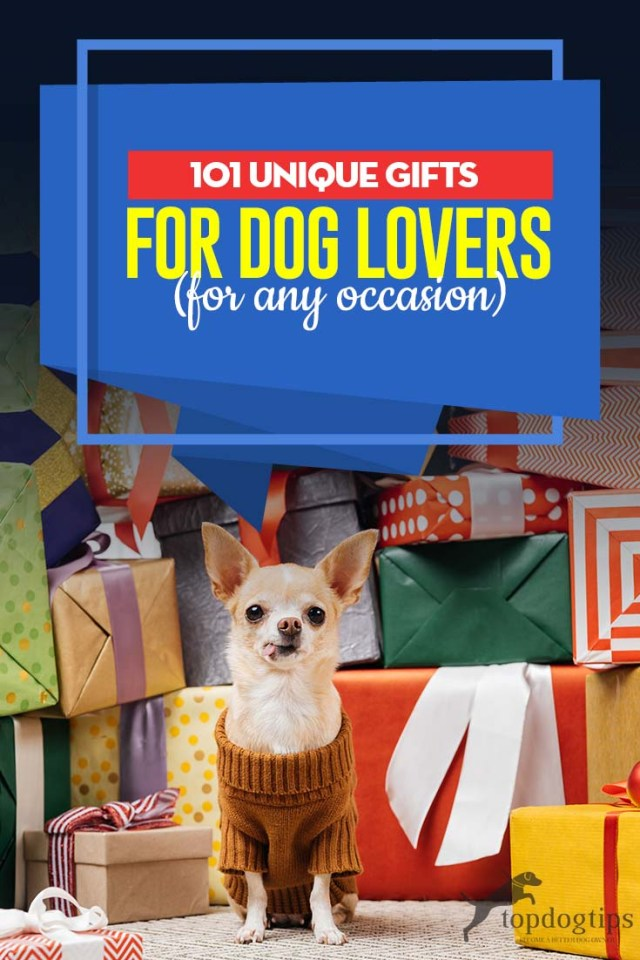 101 Best Gifts for Dog Owners in 2020