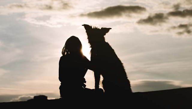 Responsible Dog Owner - 25 Ways to Be One