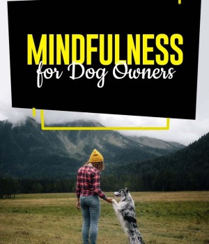 The Guide to Mindfulness for Dog Owners
