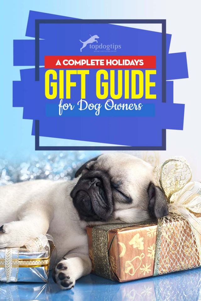 The Holidays Gift Guide for Dog Owners