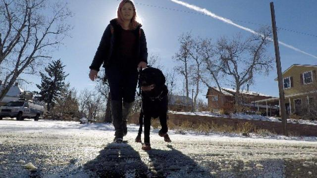 Blind woman with her guide dog Ferris