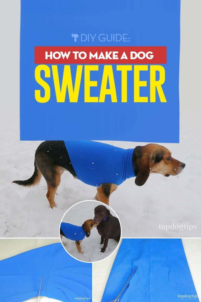 How to Make a Dog Sweater - DIY Guide