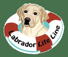 Labrador Lifeline