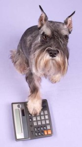Talk to Your Vet About Payment Options