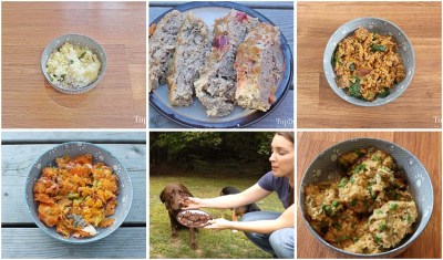 15 of My Personal Favorite Dog Food Recipes