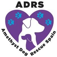 Amethyst Dog Rescue