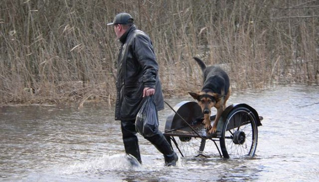Disaster Preparedness for Pet Owners