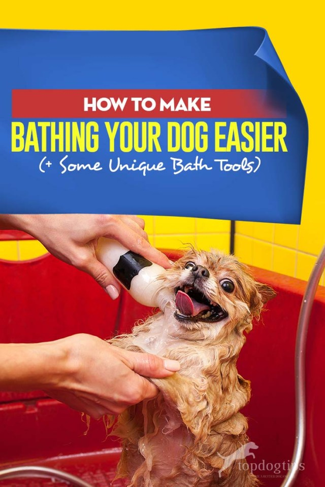 Guide on How to Make Bathing a Dog Easier (And Some Unique Tools You Can Use)