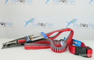 RC Pet Products Dog Walking Supplies