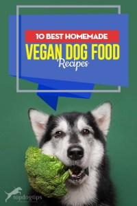 Top 10 Best Homemade Vegan Dog Food Recipes