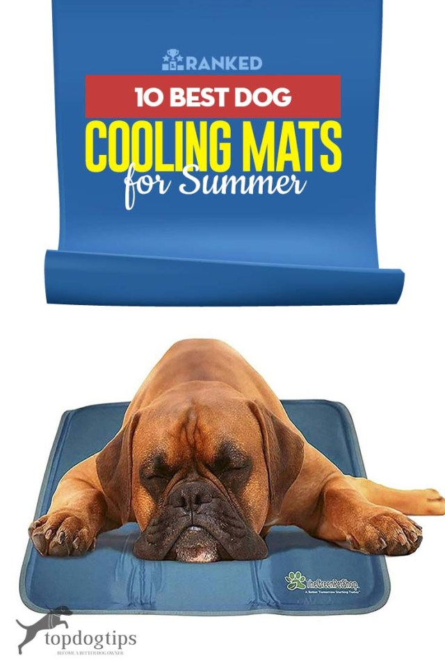 10 Top Rated Best Dog Cooling Mats for Summer