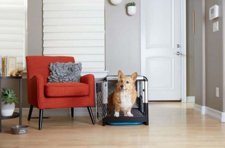 Contemporary Collapsible Crates - Diggs Revol Dog Crates