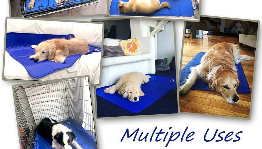 Ranking Best Dog Cooling Mat for Summer