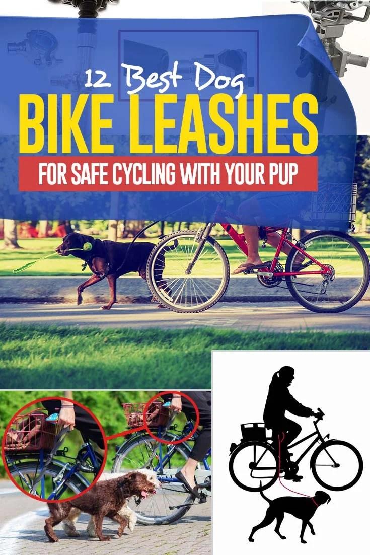 The 12 Best Dog Bike Leash Choices