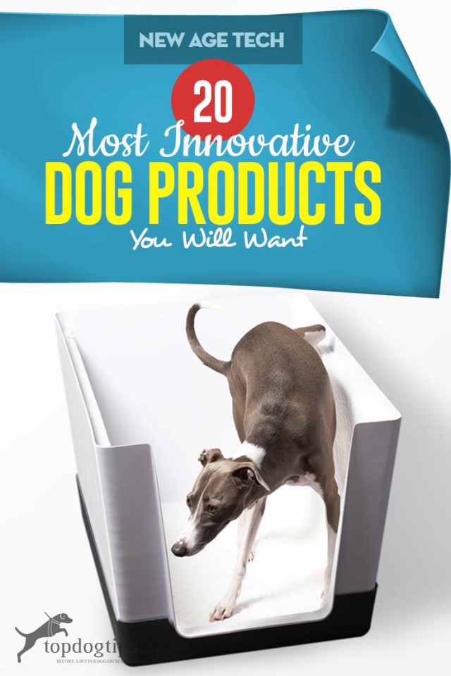 The 20 Most Innovative New Dog Products