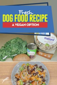 Healthy Fresh Dog Food Recipe - Vegan Option
