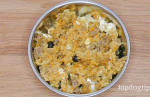 Homemade Senior Dog Food