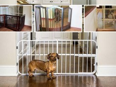 The Best Indoor Pet Gates