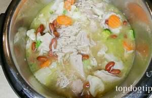 holistic homemade dog food recipe