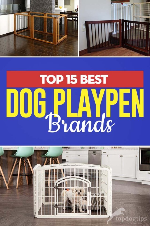 Best Dog Playpen for Your Home