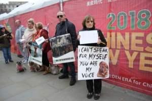 Yulin dog festival protestors