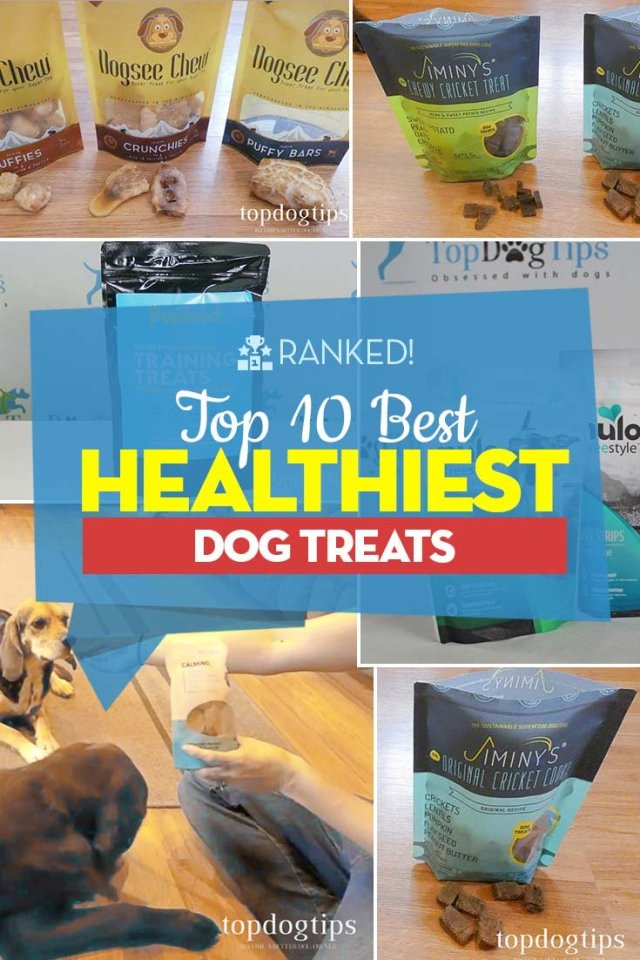 10 of the Best Dog Treats in 2020